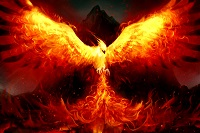 Obligatory Phoenix